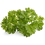 Click & Grow Smart Garden Refill Capsules   Parsley 3-pack