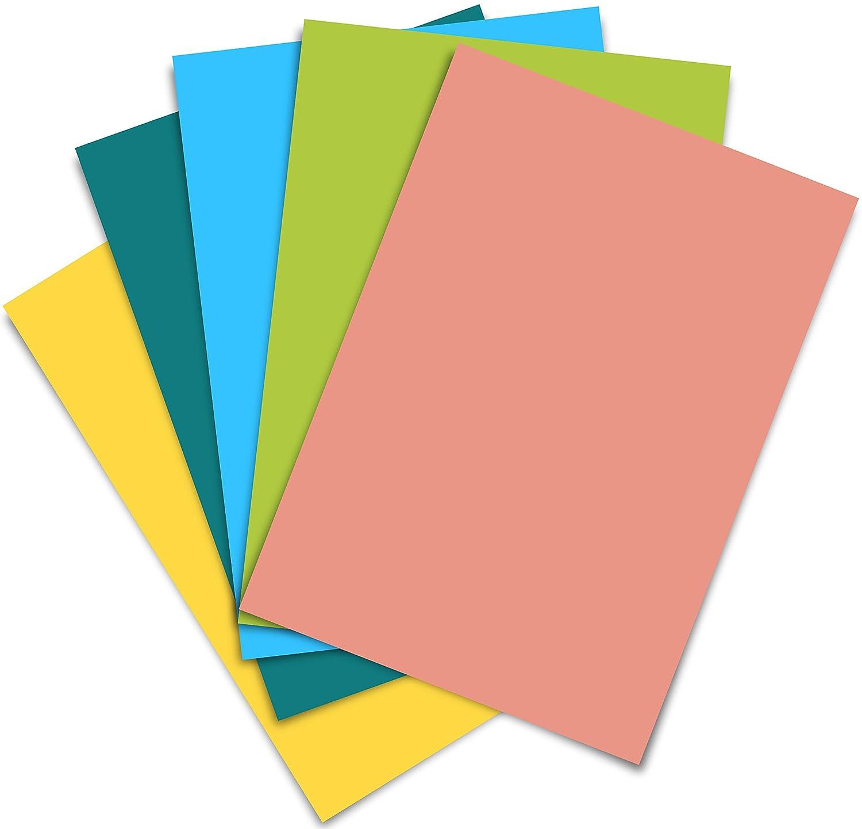 Firefly Craft 熱転写ビニール シルエットとクリカットに対応 12インチ × 20インチ 5 sheets B01F4EK628 5 sheets|Yellow, Teal, Sky Blue, Lime Green, Coral Yellow, Teal, Sky Blue, Lime Green, Coral 5 sheets