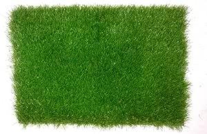 Artificial Grass 2×6 m 12 Pile Height 50mm, 5003