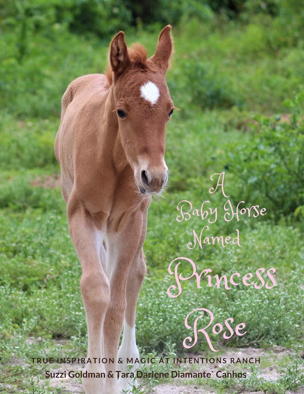 A Baby Horse Named Princess Rose True Inspiration Magic At Intentions Ranch Goldman Suzzi Diamante Canhos Tara Darlene 9780984029617 Amazon Com Books