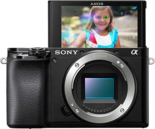 Sony Alpha 6100 Mirrorless camera review