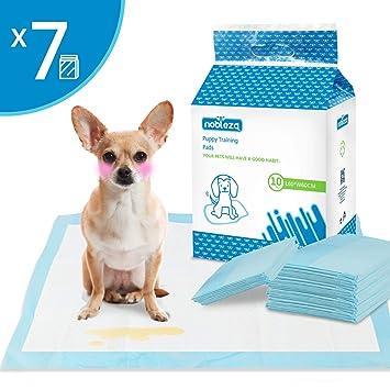 Nobleza - 70 x Empapadores Perros Alfombrilla higiénica de Entrenamiento para Perros. Ultraabsorbente 60cm*60cm.: Amazon.es: Productos para mascotas