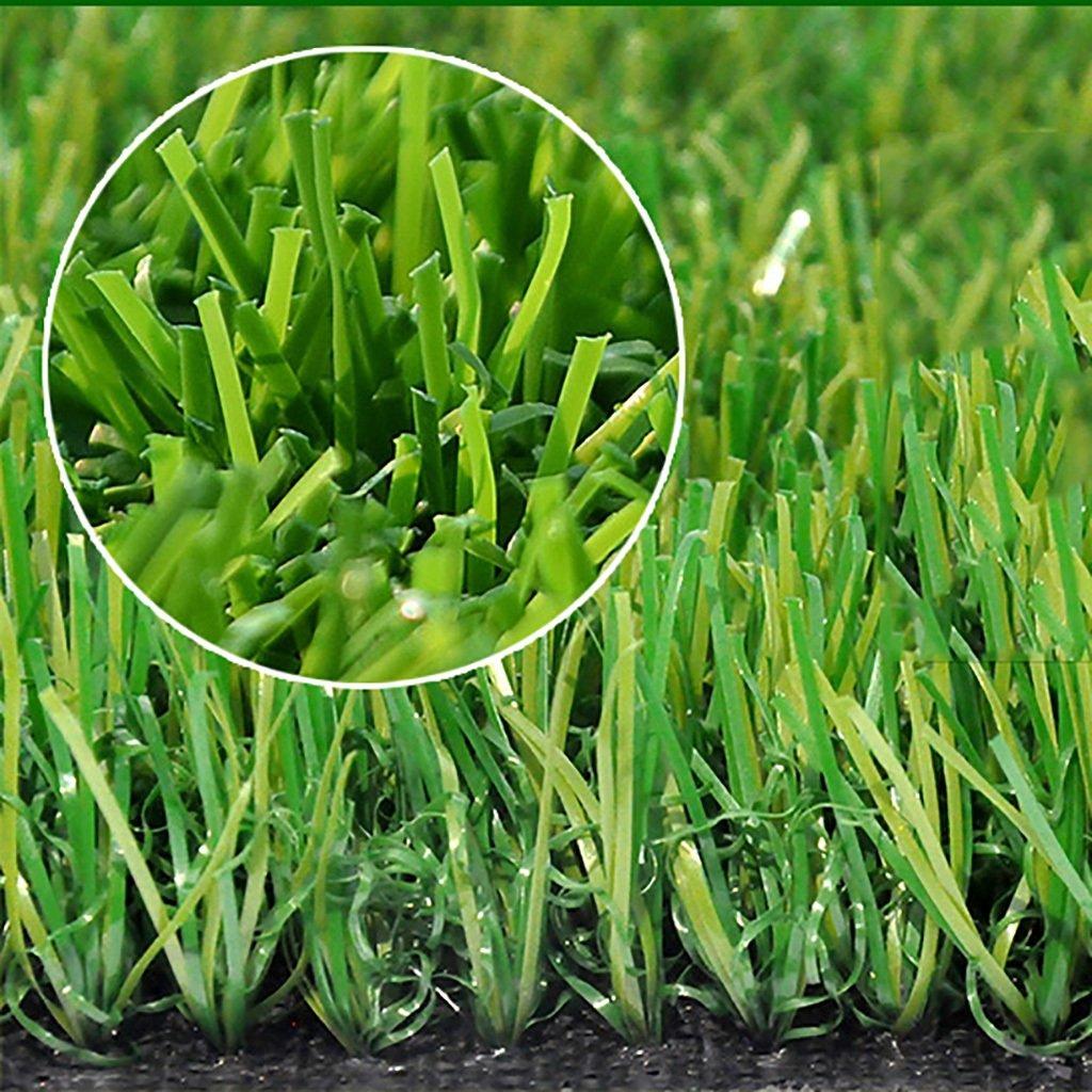 WENZHE 人工芝芝生 ガーデンターフ 人工芝サッカー場高密度安価、2メートルワイド、厚い40 / 50mm、4つのスタイル ( 色 : D-50mm , サイズ さいず : 2*3m ) B076SBBVDX 2*3m|D-50mm