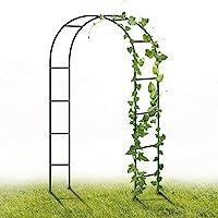 YAOBLUESEA Metal Garden Arch, 2.4M Garden Archway Enrejado