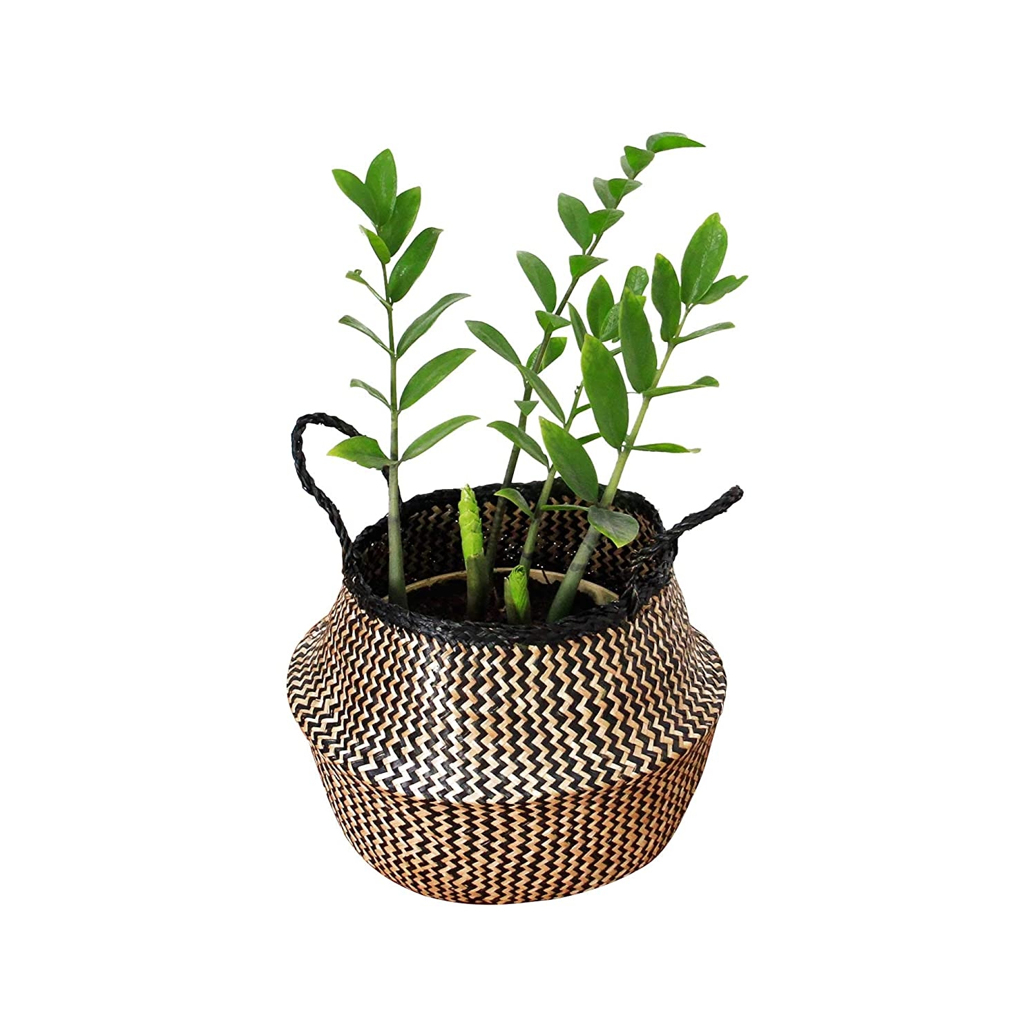 Braided Crown Plant Pot Cover Beach Bag Plant Basket Natural Plush Woven Seagrass Tote Belly Basket Storage Laundry Seagrass Natural /& White Zig Zag Pattern, Extra Large