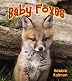 Baby Foxes (It's Fun to Learn about Baby Animals (Paperback))