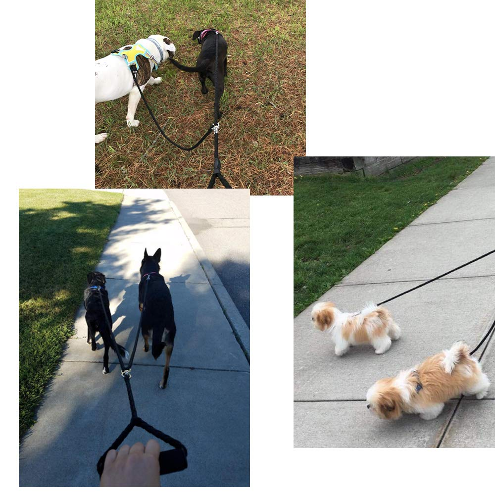 Extendable Dog Leash Automatic Pet Dog Lead Leash 5M Nylon Material Large Medium Small Dogs To Training Pejoye Dog Lead Dogs Leash Retractable Jogging Walking