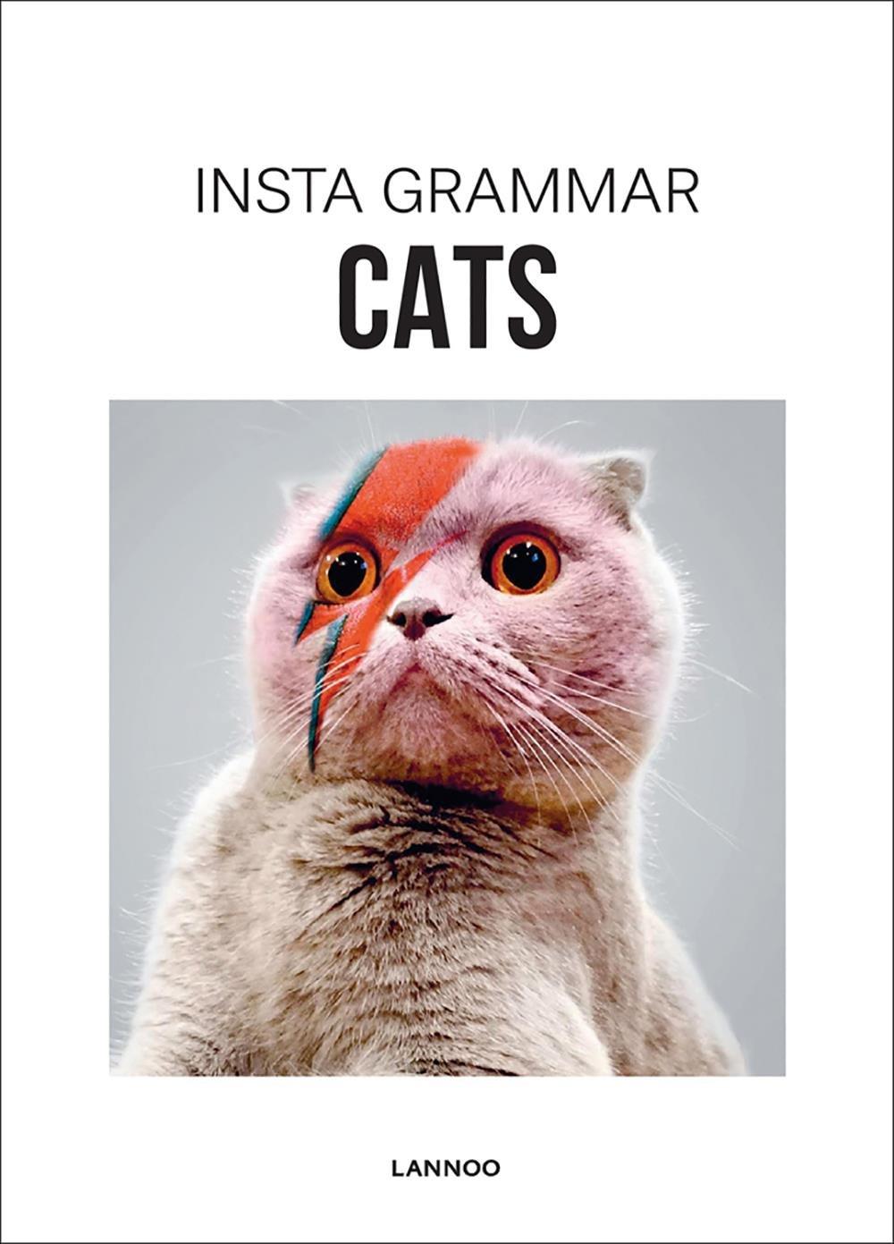 Read Online Insta Grammar: Cats PDF