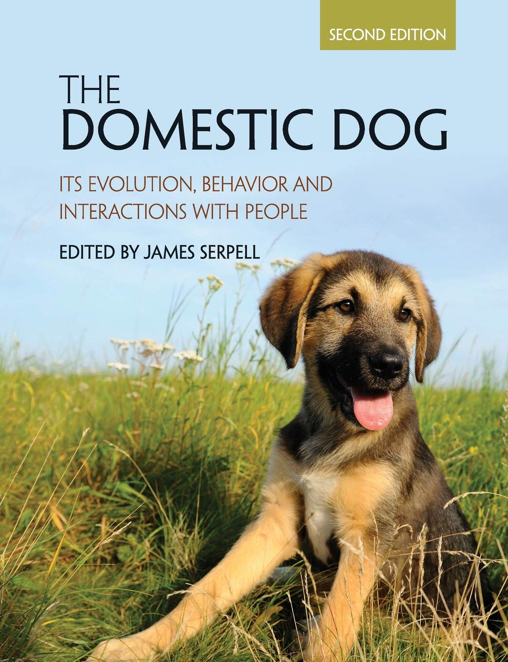 The Domestic Dog  Its Evolution Behavior And Interactions With People
