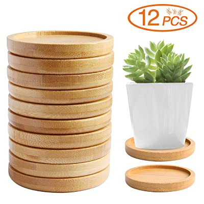 "FEBSNOW 12 Pcs 2.8"" Bamboo Round Plant Saucer, Succulent Flower Pot Holder Drainage Tray for Most Small Ceramic Planters Holding Drainage Water : Garden & Outdoor"