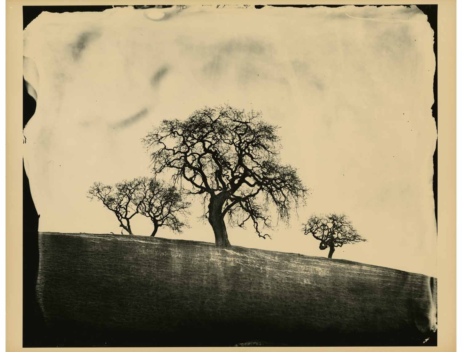 To the Wheatlight of June (A portfolio of 10 silver-gelatin prints) by