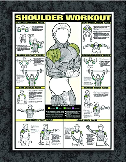 Tamatina Gym Posters - Gym Posters Motivational - Gym
