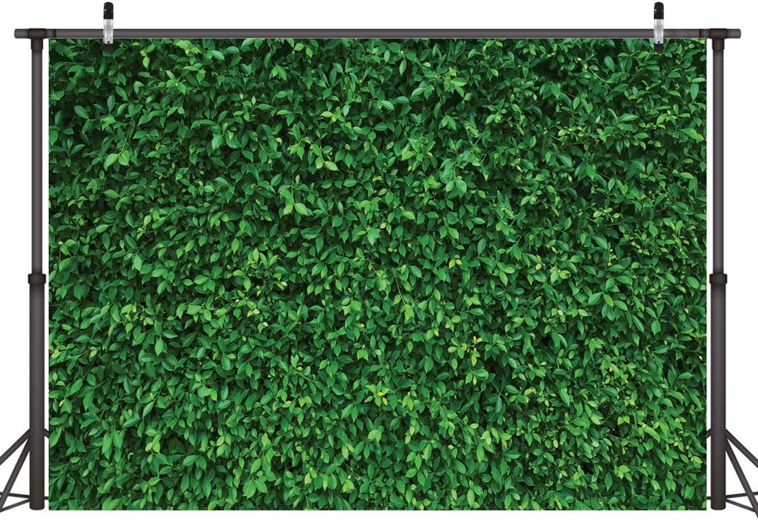 Zhy Green Leaves Backdrop Nature Lawn Vinyl Photography Background 5x7ft Wedding Birthday Party Background Decoration