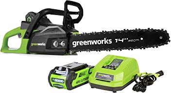 Greenworks 14-Inch 40V Cordless Chainsaw, 2.0 AH Battery Included CS40L210