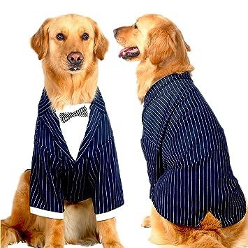 Amazon.com: HHQHHQ Traje de boda para perro, para fiesta ...
