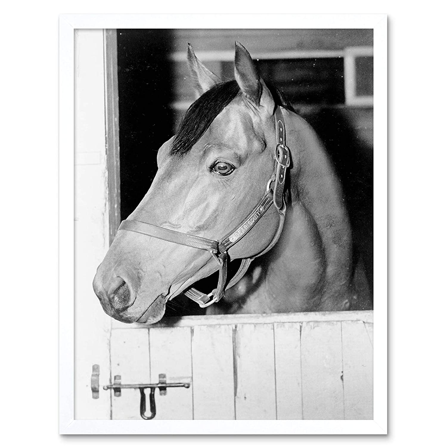Wee Blue Coo Vintage Photography Sport Animal Portrait Seabiscuit Racehorse Stall Unframed Wall Art Print Poster Home Decor Premium