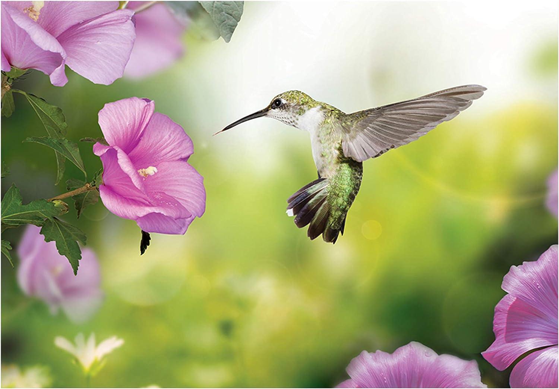 decomonkey Papier peint intiss/é Fleurs Colibri 350x256 cm XXL Design Trompe l oeil D/éco Mural Tableaux Muraux Photo Oiseau Nature
