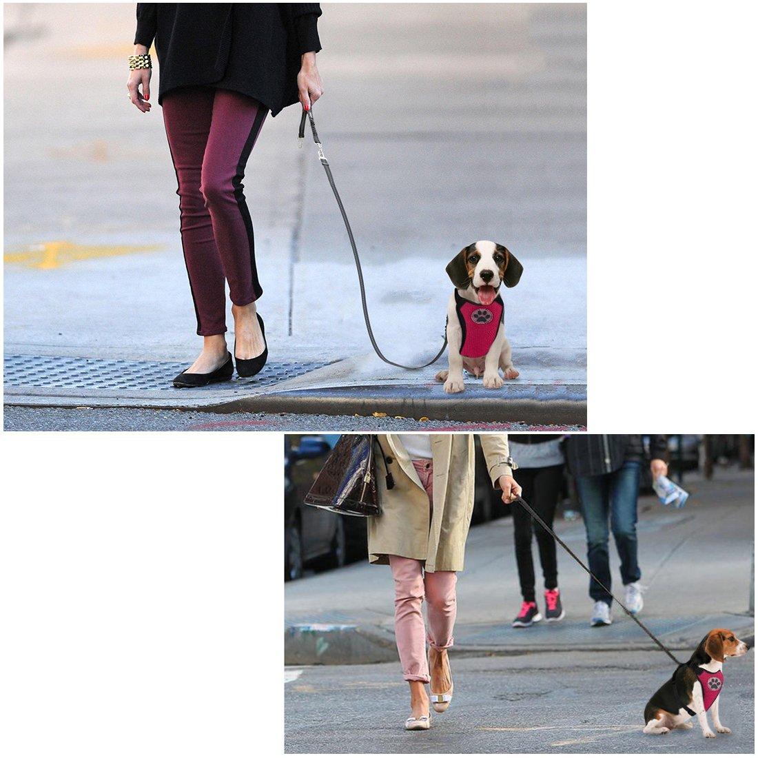 Sin cintur/ón de Seguridad SlowTon Arn/és para autom/óvil, Arn/és de Chaleco para Mascotas para Perros Seguridad en el Coche Cuello Ajustable y Correa para el Pecho