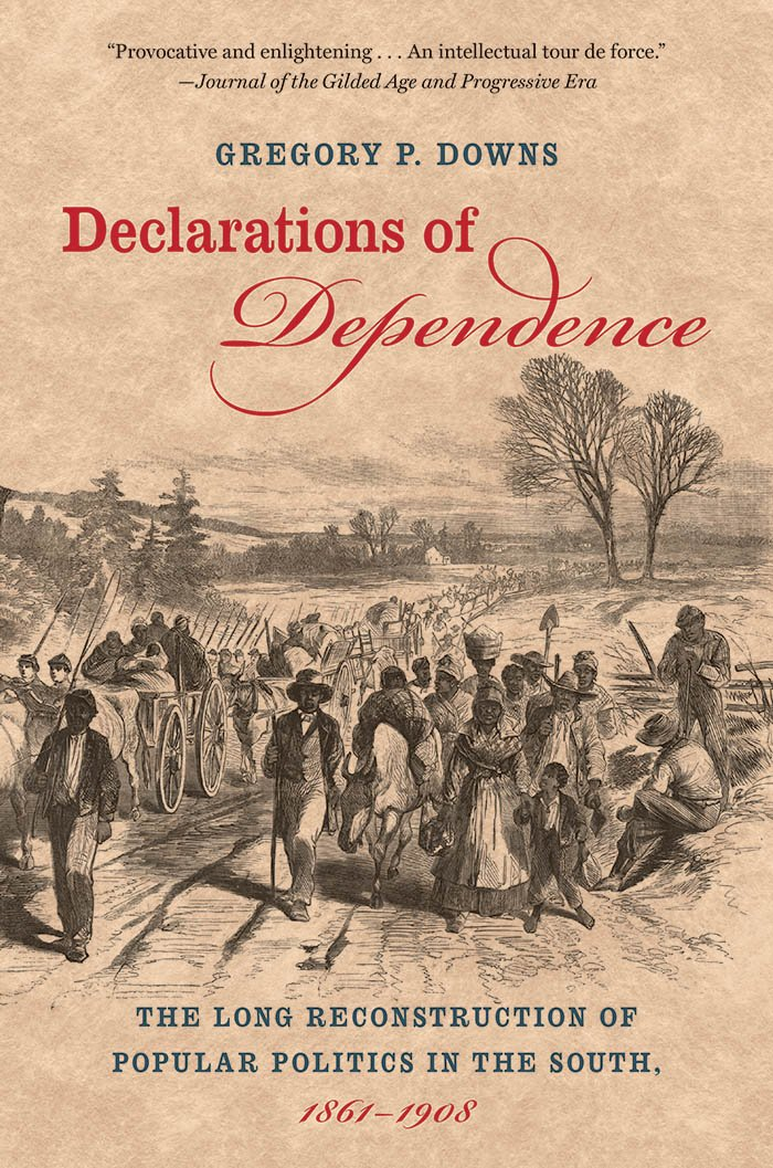 Read Online Declarations of Dependence: The Long Reconstruction of Popular Politics in the South, 1861-1908 pdf