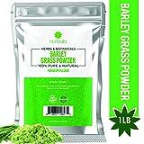 Barley Grass Powder, 1 lb - Immune Health, Energy