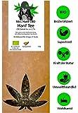 canapa Tee–Una miscela di fiori e foglie (1,6–1,7%) IN Bio Qualità canapa Erbe + + + all' interno della Germania spedizione gratuita in Germania a partire da 20€ + + +