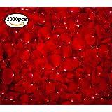 Rosa di Velluto - San Valentino - Romantici Petali Rossi Floreali per Eventi Matrimoni Anniversari Cerimonie Feste Fidanzamento e Decorazioni (2000)