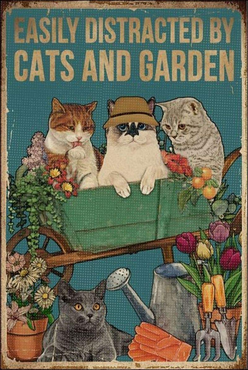 Easily Distracted by Cats and Garden Retro Metal Tin Sign Vintage Aluminum Sign for Home Coffee Wall Decor 8x12 Inch