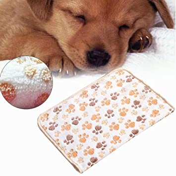 JUYUAN Mascota para perros manta Perros Gatos Mascotas manta Suave Felpa manta de cama Manta de invierno cálido: Amazon.es: Productos para mascotas