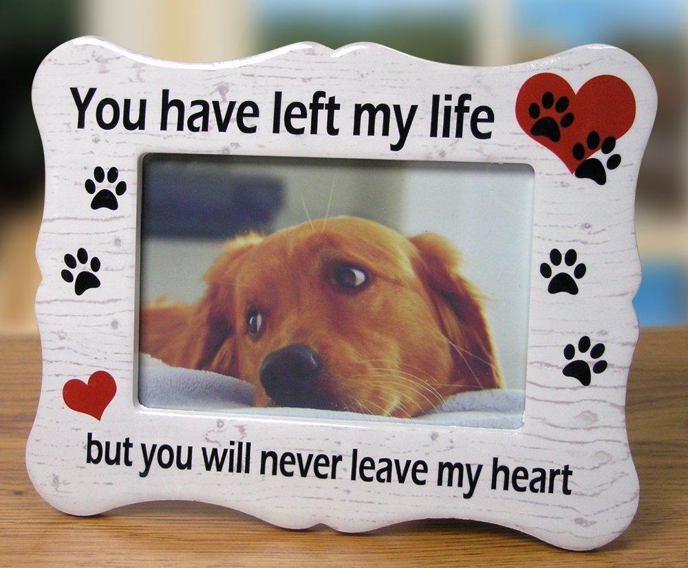 Amazon.com - Banberry Designs Pet Memorial Ceramic Picture Frame ...