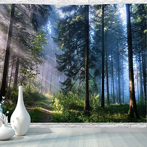 BJYHIYH Misty Forest Tapestry Wall Hanging Nature Landscape Tapestry Sunshine Through Tree Tapestries for Bedroom Living Room Dorm Decor 90.6 59.1