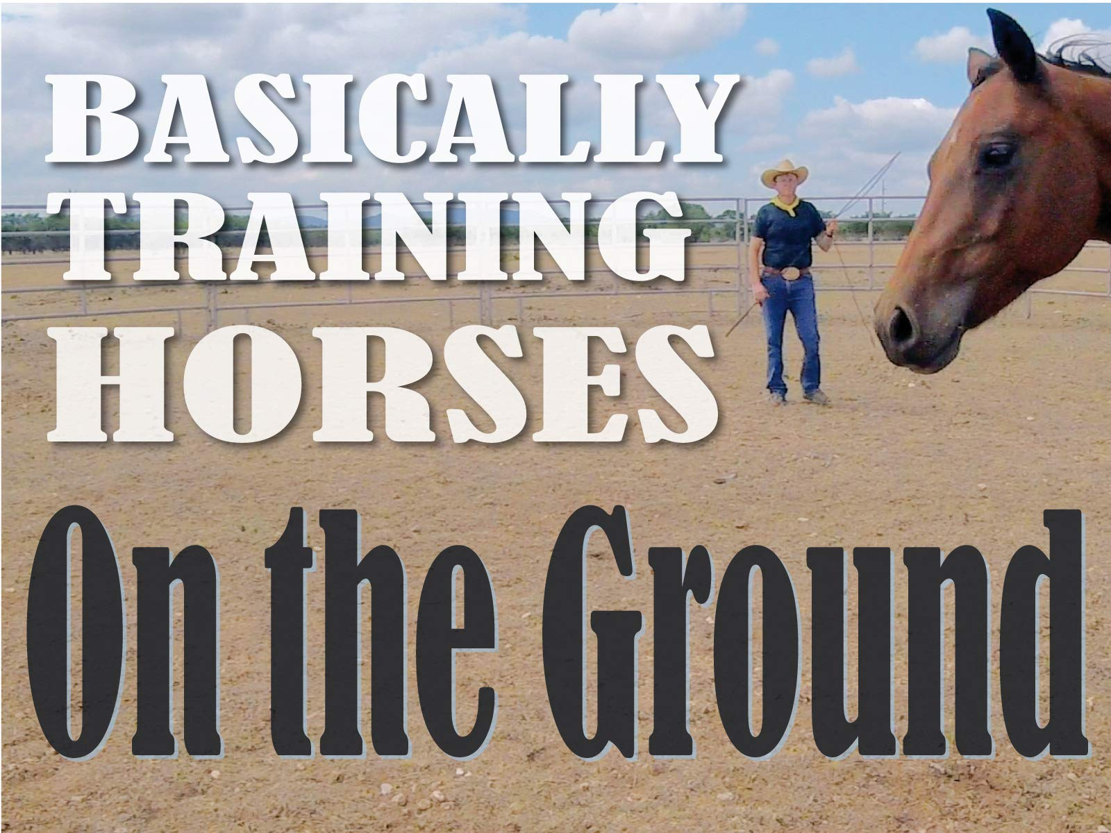 Basically Training Horses - On the Ground - Season 1