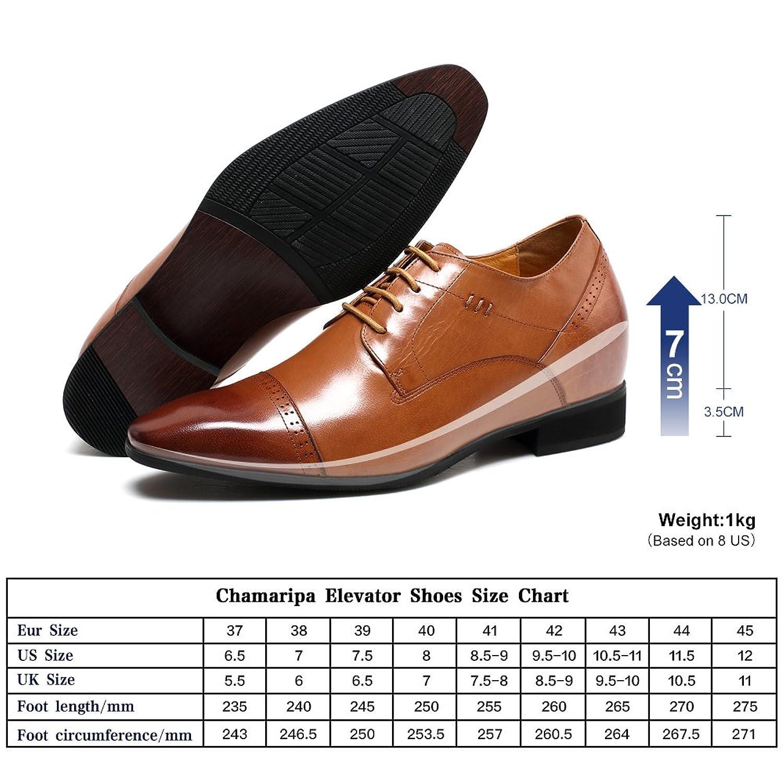Chamaripa Chaussures Plates Avec Lacets Homme, Brun (42, Brun)