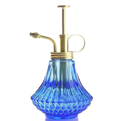 Amazon.com: Purism estilo Planta mister- Color Azul Botella ...