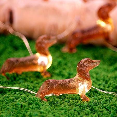 Leash On Life Christmas Party 2020 Amazon.: Impress Life Pet Theme Decorative String Lights, 10ft