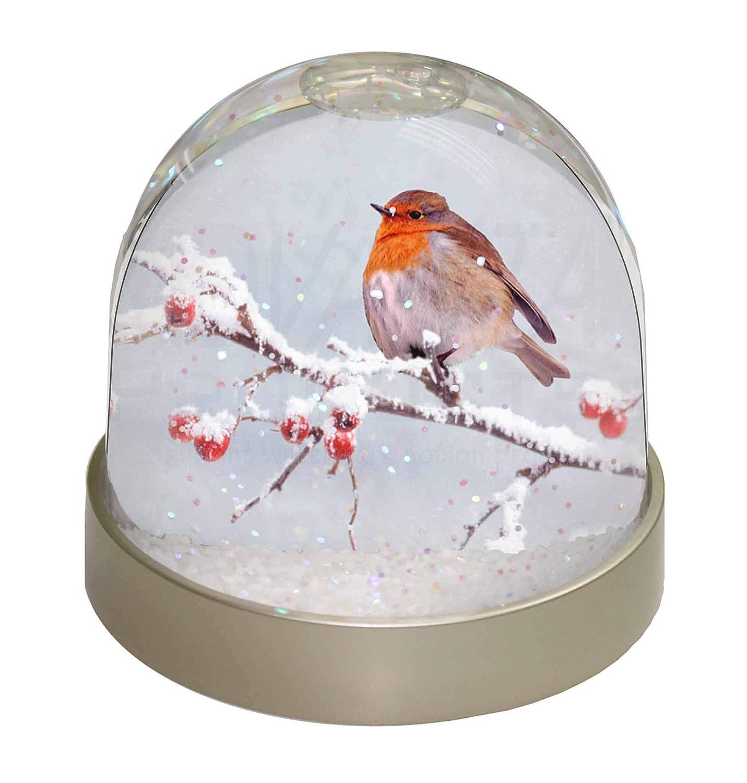 Advanta Group House Mouse Snow Dome Globe Waterball Gift 9.2 x 9.2 x 8 cm Multi-Colour