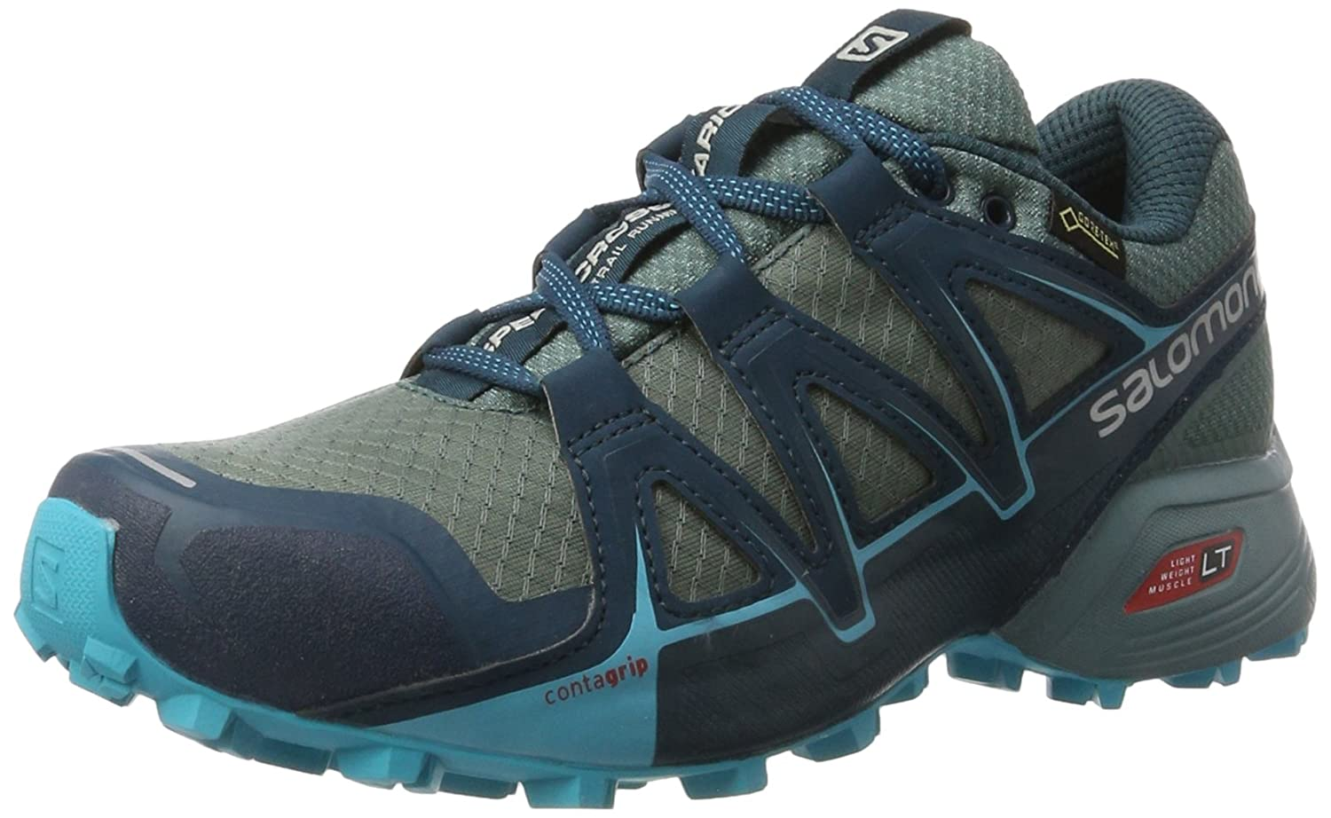 Blau (Arctic North Atlantic Blau Bird) Salomon Damen Speedcross Vario 2 GTX Trailrunning-Schuhe