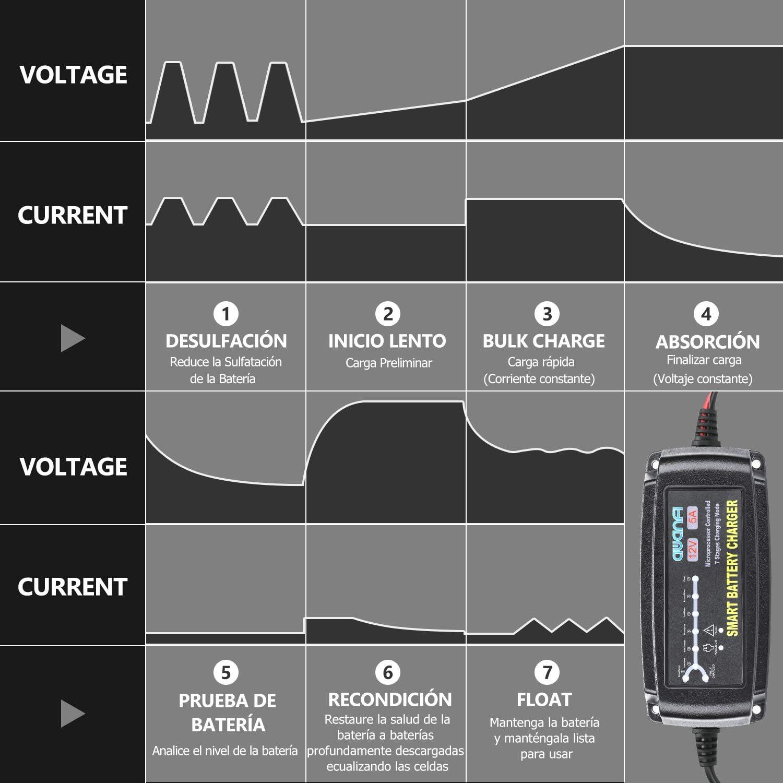 Barco y Camiones AWANFI Cargador Bater/ía Coche 12V 5A Autom/ático Inteligente Mantenedor Bateria Coche y Protecciones M/últiples para Bater/ías Plomo /Ácido AGM,Gel,Wet,MF,EFB para Coches,Moto,ATVs,RVs