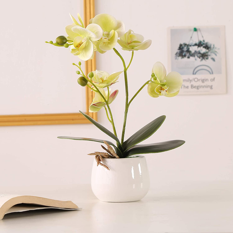 ENCOFT Flores Artificiales Plástico Flor de Phalaenopsis Realista Orquídea Mariposa con Maceta Imitación Cerámica Decoración (Verde Claro)