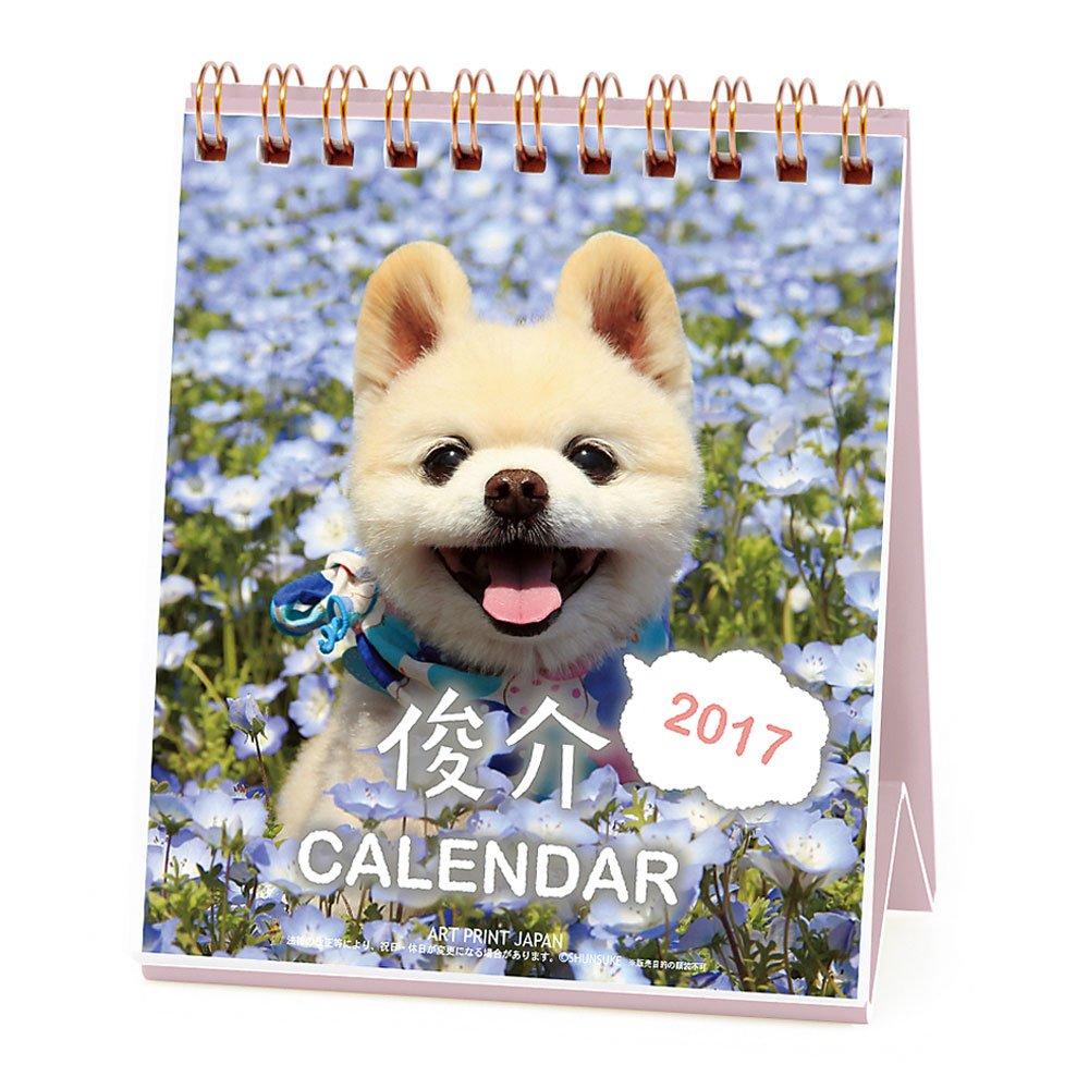 アートプリントジャパン 2017 俊介 カレンダー(週めくりミニ) No.024 1000080085 B01HO069I0