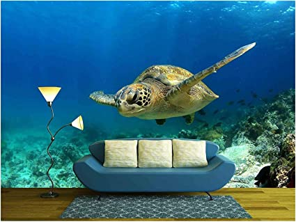Green Sea Turtle photo Hole in wall sticker wall mural 50189957