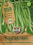 Bohnensamen - Bio-Buschbohne (grüne Bohne) Maxi - Bio-Saatgut von Sperli-Samen