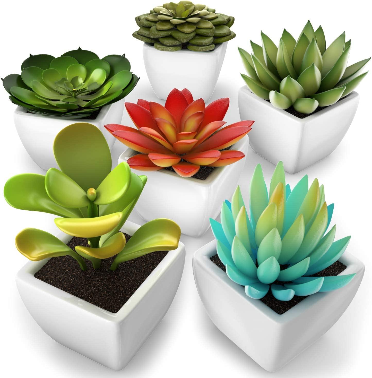 kdelicate Artificial Succulent Assorted Decorative Faux Succulent Fake Plants with White Ceramic Pots -Pack of 6
