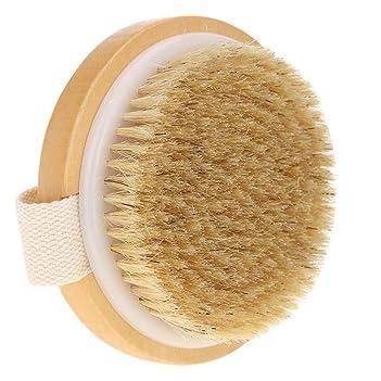 Shake Beauty Body Brush for Dry Skin