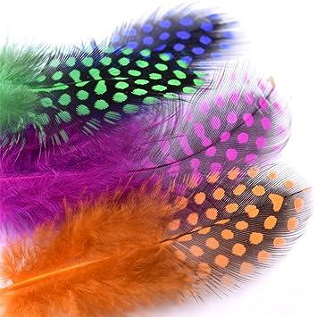 Phad Pesca 100pcs / Paquete Colores Mezcla Indias Perla Gallina Plumas Mosca Atado Material: Amazon.es: Deportes y aire libre