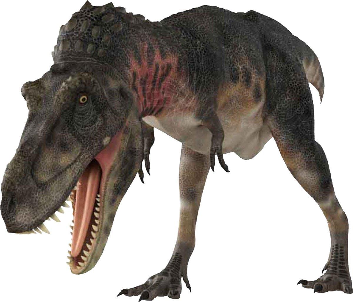Brainstorm INFANTIL EDUCATIVO JUGUETES ANIMAL Imágenes Dinosaurio ...