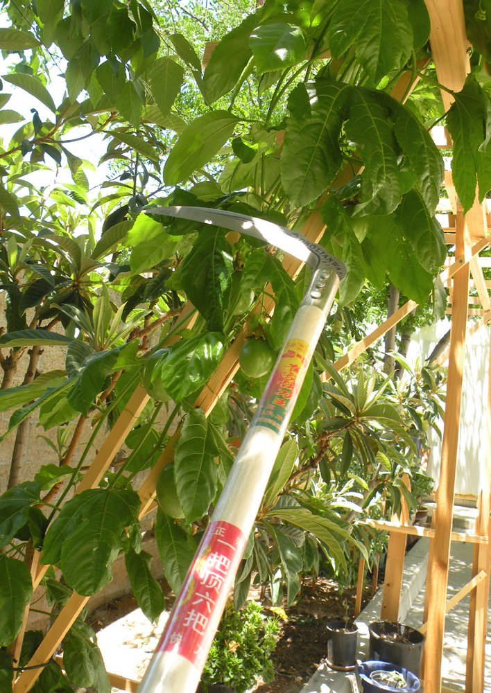 King of The Vine Sickle - The Solid Aim Home Tool 23'' Long-Handle Tropical Vine Grass Sickle Brings Quality and Reliability to Your Field Work. It is Designed for Pruning, Cutting and Harvesting. by Eastern Cloud (Image #5)