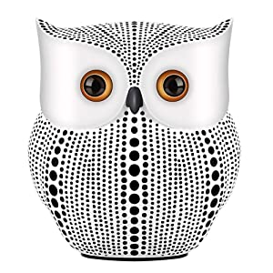 NJCharms Owl Statue Decor, Small Crafted Buho Figurines for Home Decor Accents, Living Room Bedroom Office Decoration, Buhos Bookself TV Stand Decor - White