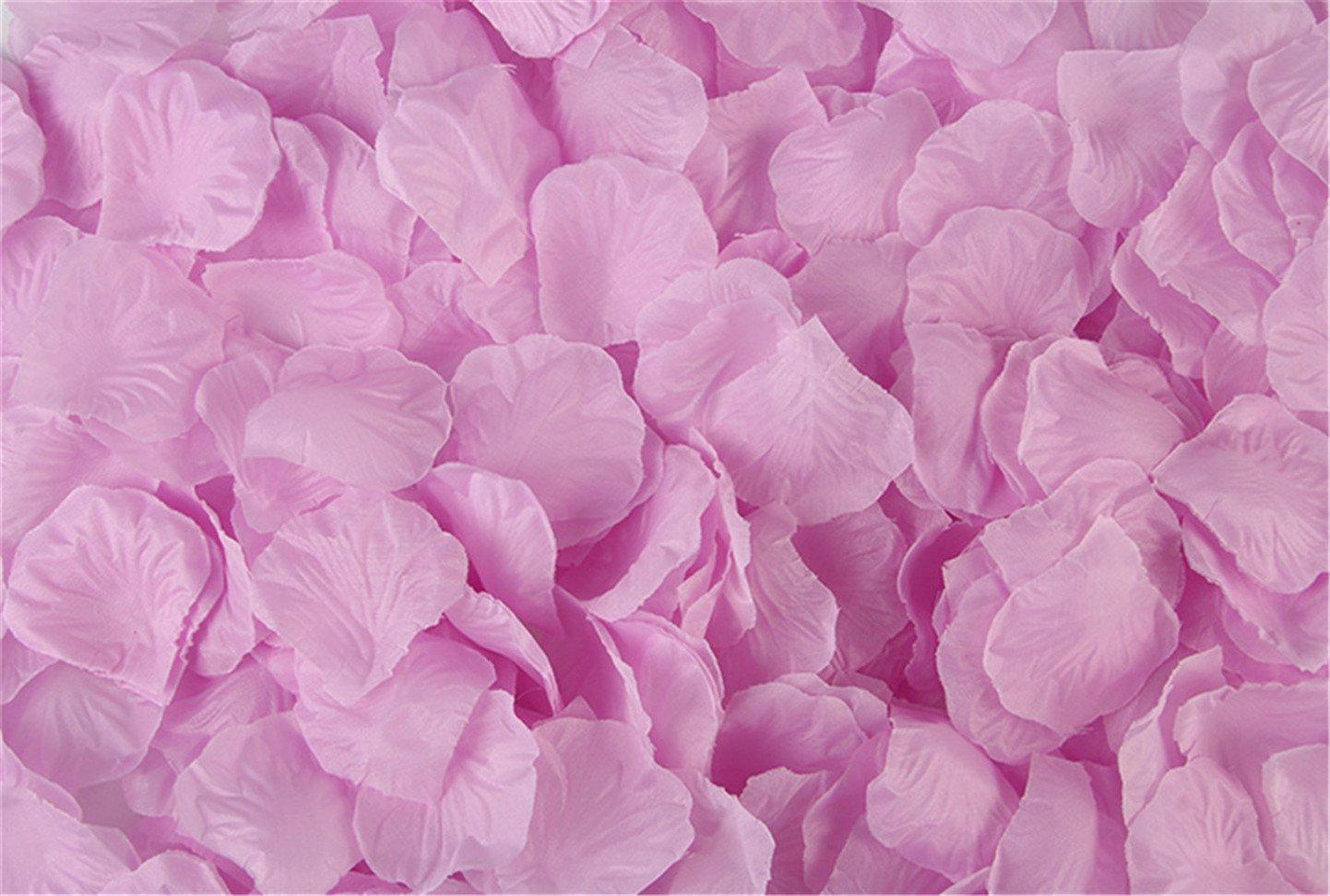 Vivianbuy 2000 PCS Artificial Silk Flower Black Rose Petals for Wedding Party Bridal Decoration