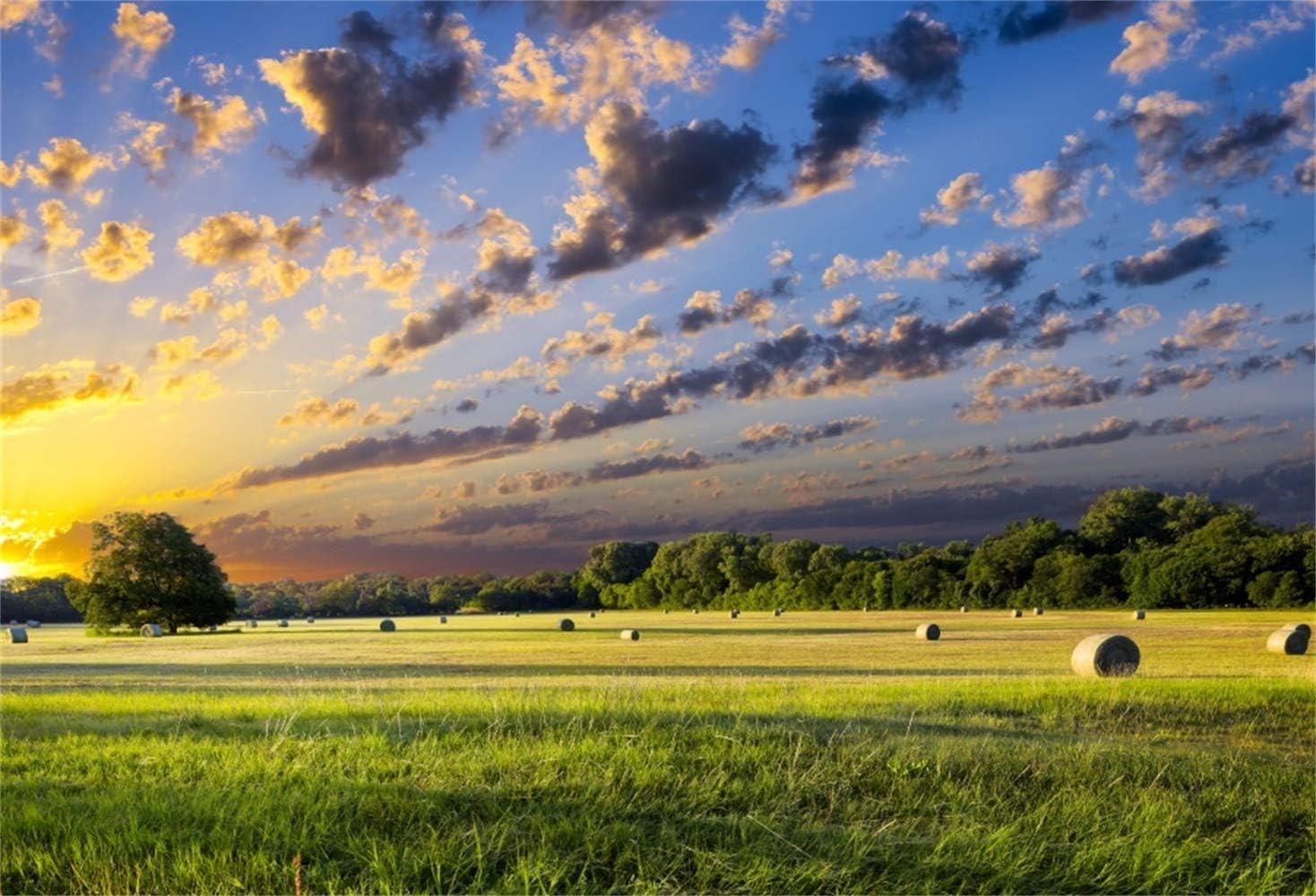 GoEoo 10x7ft Dusk Harvesting Farmland Hayricks Vinyl Photography Background Golden Sunset Glow Summer Countryside Scenery Backdrop Rural Scenic Landscape Wallpaper Studio Photo Props