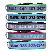 Deals on LovelyDog Embroidered Personalized Dog ID Collar